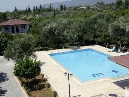 Köyceğiz - 45,000M2 Olive Grove With 6 Bed Villa