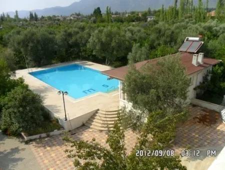 Köyceğiz - 45,000M2 Olive Grove With 6 Bed Villa